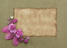 角落开花与空白的背景 库存照片