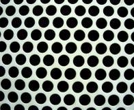 黑角规品种  免版税图库摄影