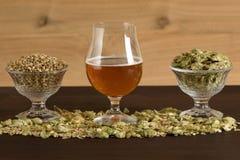觚啤酒、麦芽和蛇麻草 库存照片