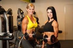 解决与在健身的哑铃的两名美丽的妇女 库存照片