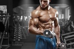 解决在健身房的肌肉人做与哑铃的锻炼在二头肌,强的男性赤裸躯干吸收 库存图片