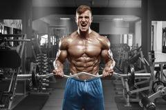 解决在健身房的肌肉人做与杠铃的锻炼在二头肌,强的男性赤裸躯干吸收 库存照片