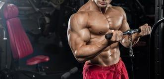 解决在健身房的肌肉人做锻炼在三头肌,stro 免版税库存照片