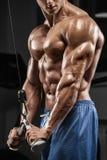 解决在健身房的肌肉人做锻炼,三头肌,强的男性赤裸躯干吸收 免版税库存照片