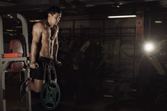 解决在健身房的肌肉爱好健美者做在paral的锻炼 库存照片