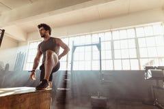 解决在健身房的肌肉男性运动员 库存图片