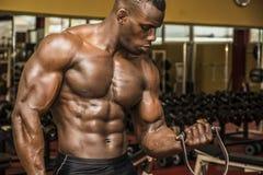 解决在健身房的Hunky肌肉黑人爱好健美者 免版税库存照片