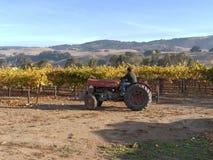 解决在葡萄园里的拖拉机 免版税库存图片