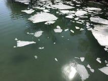 解冻壮观的冰川 库存照片