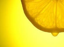 解剖学柠檬 免版税库存照片