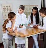 解释分子结构的老师 免版税库存图片