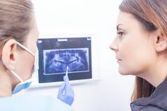 解释牙齿X-射线的医生 免版税图库摄影