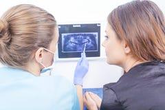 解释牙齿X-射线的医生 免版税库存图片
