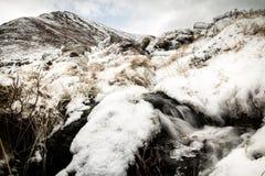 解冻的雪, Lofoten 免版税库存图片