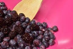解冻莓果 库存照片