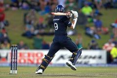 詹姆斯安徒生英国板球运动员 免版税图库摄影