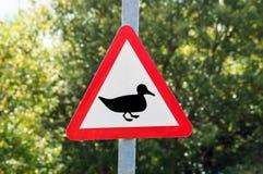 警告鸭子标志 库存照片