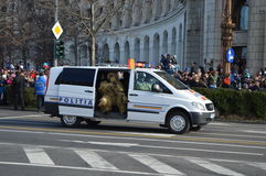 警察小客车 免版税库存照片