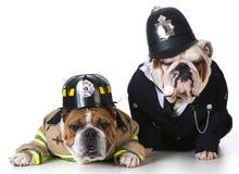 警察的狗消防队员 库存照片