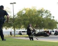 警察K-9示范 库存图片