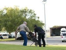 警察K-9示范 免版税图库摄影