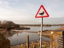 警报信号鸭子剪影白色和红色三角金属标志p 图库摄影