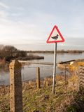 警报信号鸭子剪影白色和红色三角金属标志p 免版税图库摄影