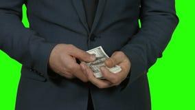 计数在绿色背景的美元 股票视频
