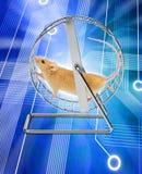 计算机互联网鼠标网络连接 图库摄影