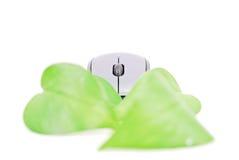 计算机去的绿色 图库摄影