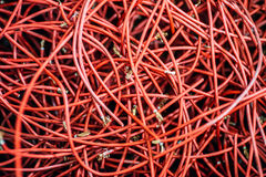 计算机和互联网缆绳  库存照片