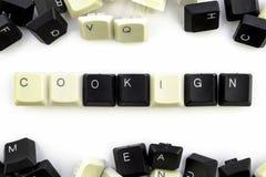计算机和电脑技术在产业和人类活动领域-概念 烹调在从的白色背景 库存图片