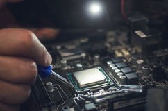 计算机处理器,与cpu插口一起使用 库存图片