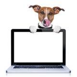 计算机狗 图库摄影