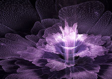 紫色futurustic花 图库摄影