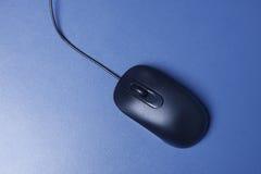 计算机的黑老鼠 免版税图库摄影