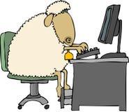 计算机绵羊 图库摄影