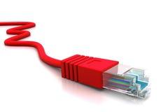 计算机网络缆绳 免版税库存照片