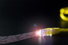 计算机网络缆绳 库存图片