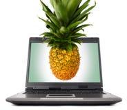 计算机膝上型计算机菠萝 免版税库存照片