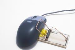 计算机鼠标捕捉 免版税库存图片