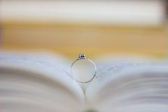 订婚人环形诉讼 库存图片