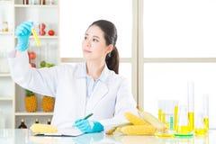 认为和拿着基因的亚裔女性科学家一个玉米 库存照片