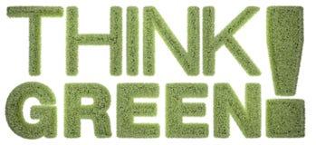 认为绿色! 免版税库存照片