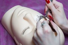 训练一位年轻大师修造在硅树脂时装模特的睫毛 与塑造镊子、的容量,更正、关心和remov一起使用 免版税库存照片