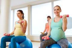 训练与在健身房的锻炼球的孕妇 库存图片