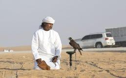 训练他的猎鹰的Emirati人 免版税库存照片