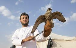训练他的猎鹰的Emirati人 免版税库存图片
