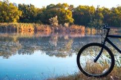 训练在一个凉快的早晨乘在水库附近的自行车在夏天 免版税图库摄影
