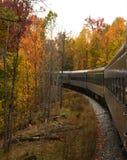 训练在轨道曲线通过色的树 库存图片